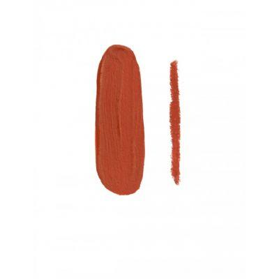 Kylie Liquid matte lipstick and lip line Shade 22